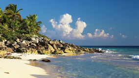 Beautiful Wild Beach stock footage