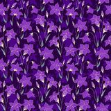 Beautiful wild bluebell flowers seamless pattern 4 Stock Images