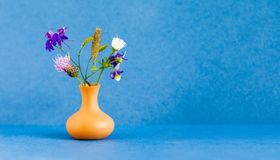 Beautiful wild flowers bouquet, brown clay vase on blue background. Summer time floristic still life photo. Shallow stock photo