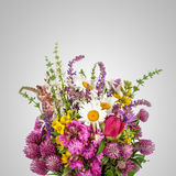 Beautiful Wild Flowers Bouquet. Wildflowers Royalty Free Stock Photography