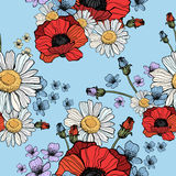 Beautiful wild flowers poppies pattern. On blue background- vector Stock Photo