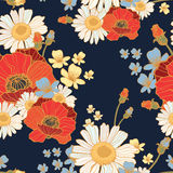 Beautiful wild flowers poppies. Pattern- vector Royalty Free Stock Photography