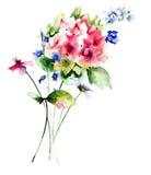Beautiful wild flowers Stock Photo