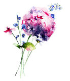 Beautiful wild flowers Royalty Free Stock Photo