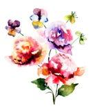 Beautiful wild flowers Royalty Free Stock Photos