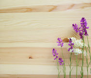 Beautiful wild flowers on wood background Royalty Free Stock Images