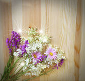 Beautiful wild flowers on wood background Stock Photography