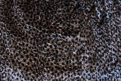 Beautiful abstract print wild leopard fur pattern. Beautiful wild leopard fur pattern for background stock photography
