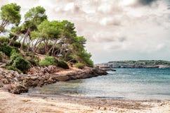 Beautiful wild tropical beach. Stock Image