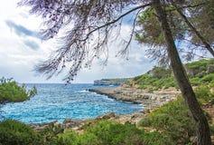 Beautiful wild tropical coast. Royalty Free Stock Photography