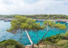 Beautiful wild tropical coast. Stock Photo