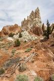 Beautiful Wilderness Stock Photo