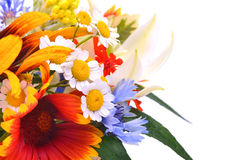 Beautiful wildflowers, chamomiles, chrysanthemums, cornflower stock photo