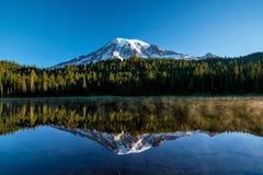 Beautiful wildflowers and Mount Rainier, Washington state royalty free stock photo