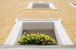 Beautiful window with flower box. A Beautiful window with flower box Royalty Free Stock Image
