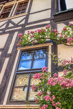 Beautiful window and flowers. Details. Wartburg Castle in Eisenach, Germany Royalty Free Stock Images