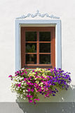 Beautiful window Royalty Free Stock Images