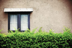 Beautiful window on green wall, vintage or retro filtered. Stock Photography