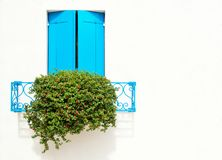 Free Beautiful Window With Blue Shutters And Flowers On A White Wall. Colorful Houses On Burano Island Near Venice, Italy Royalty Free Stock Images - 159173949