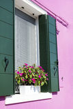 Beautiful windows with pot  flowers in Burano island (Venice, Italy) Stock Image