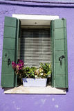 Beautiful windows with pot flowers in Burano island (Venice, Italy) Stock Photos