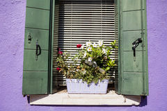 Beautiful windows with pot flowers in Burano island (Venice, Italy) Stock Photo
