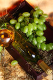 Beautiful wine composition Stock Photos