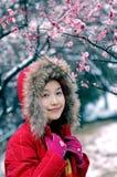 Beautiful winter Stock Image