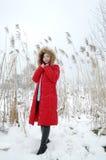 Beautiful winter Stock Photography