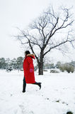 Beautiful winter Stock Images