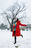 Beautiful winter Royalty Free Stock Image