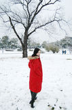 Beautiful winter Royalty Free Stock Photography