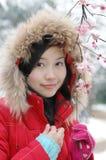 Beautiful winter Royalty Free Stock Photography