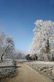 Beautiful Winter Stock Photo