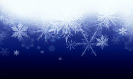 Winter background with snow flakes Stock Photos