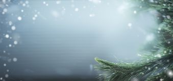 Beautiful winter banner background with pine branches and snow. Winter holidays and Christmas. Concept stock photo