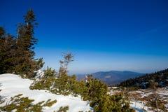 Beautiful winter in Beskid mountains Stock Photo