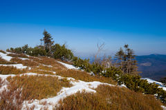 Beautiful winter in Beskid mountains Stock Image