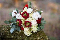Beautiful winter bouquet of spruce, roses and cotton. The bride`s bouquet. royalty free stock photo