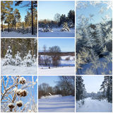 Beautiful winter collage Stock Images