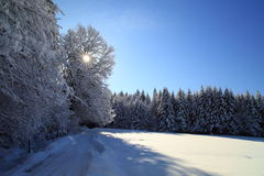 Beautiful winter day Stock Photo