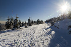 Beautiful winter day Royalty Free Stock Images