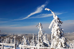 Beautiful winter day in mountains Royalty Free Stock Photography