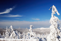 Beautiful winter day in mountains Stock Image