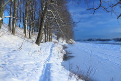 Beautiful winter day. Snow on the bank of the river. Trees under the snow. The low winter sun royalty free stock images