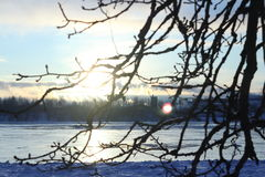 Beautiful winter day. Snow on the bank of the river. Stock Images