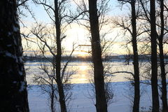 Beautiful winter day. Snow on the bank of the river. Trees under the snow. The low winter sun stock image