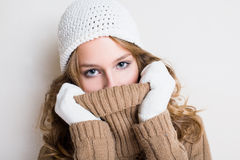 Beautiful winter fashion girl. Royalty Free Stock Photos