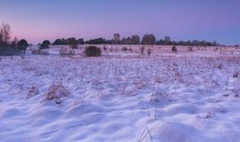 Beautiful winter fields and trees landscape Royalty Free Stock Photography