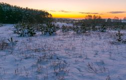 Beautiful winter fields and trees landscape Stock Photography